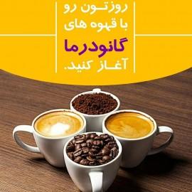 کافه لاته با قارچ گانودرما دکتر بیز..